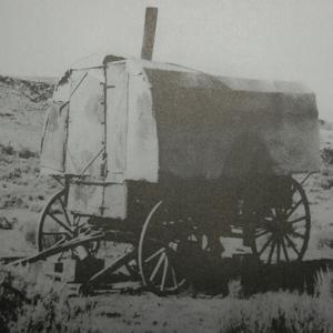 History Wilson Sheep Camps
